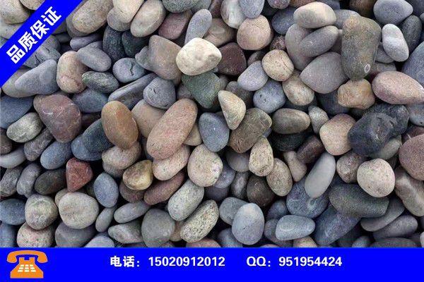 温州平阳鹅卵石批发行业市场