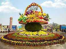 延安安塞县立体花坛一般用什么植物