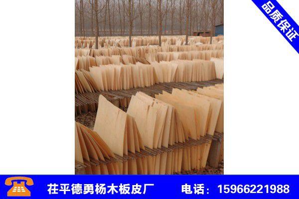 海南三沙杨木板皮
