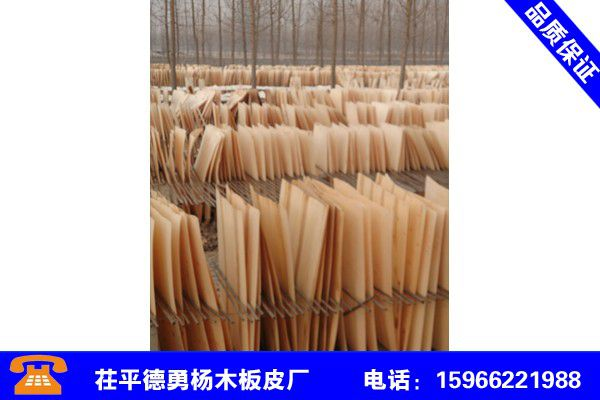 贵州铜仁杨木板皮加工