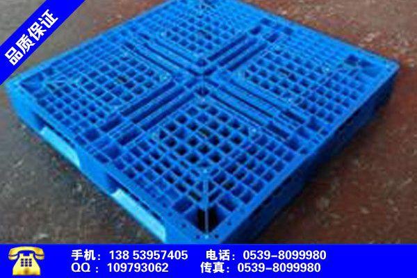 三门峡塑料托盘制造产品的选择常识
