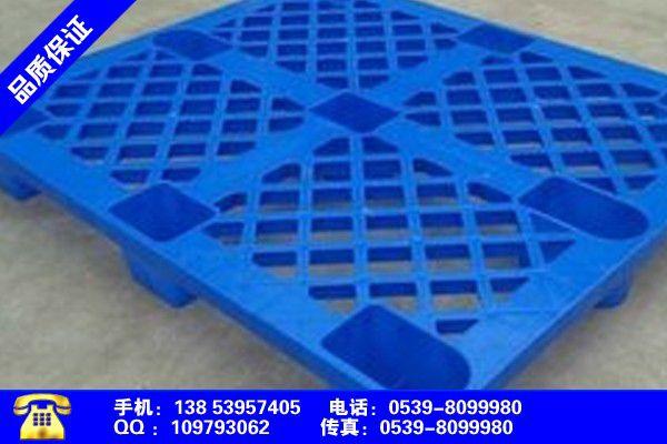 苏州吴江塑料托盘工厂零售今日新闻