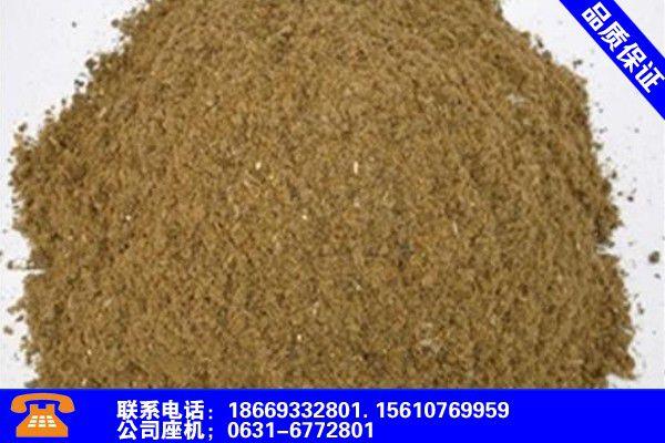廊坊文安鱼粉怎么做的产品使用有哪些基本性