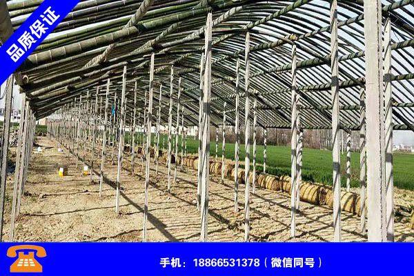 苏州吴中建鸭棚如何建造高价值
