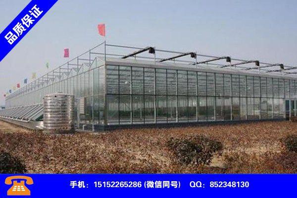 宜春铜鼓蔬菜大棚建设品质提升