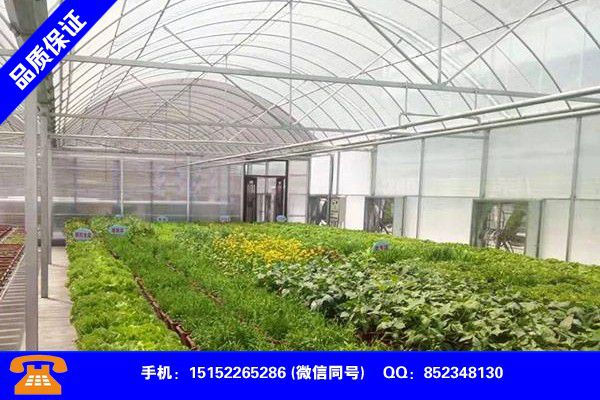 Changchun Nanguan Vegetable Greenhouse Construction New Preferential Quotes