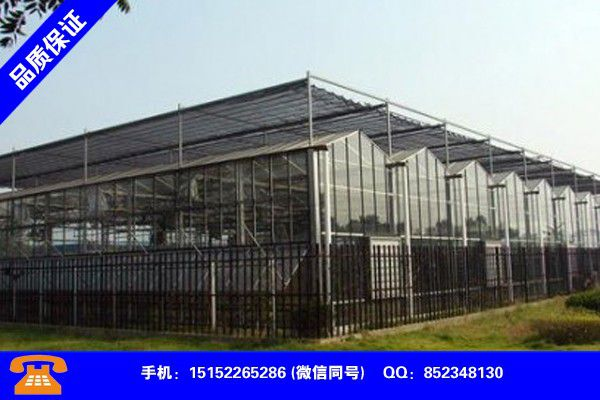 Zhumadian Pingyu glass greenhouse which is more important