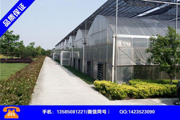 Prediction of the development trend of Yulin Shenmu aquaculture greenhouses