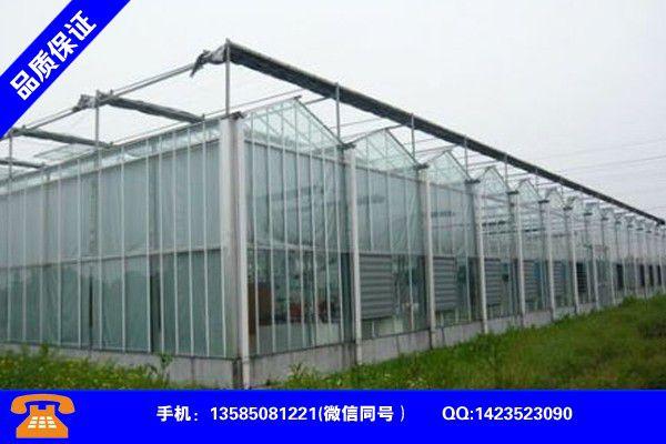 吉安井冈山冬暖式蔬菜大棚专业企业