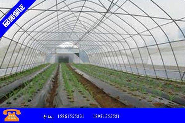 湖北蔬菜大棚 品質管理