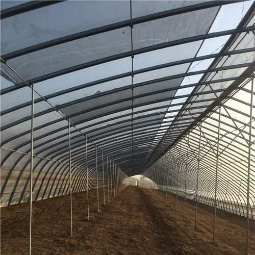 抚顺新抚区全钢架温室大棚主要功能与优势