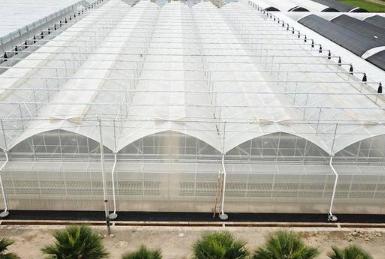 养鸭大棚花卉养殖大棚市场数据统计