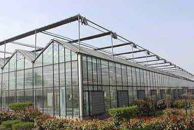 合肥蔬菜大棚市场规模预测