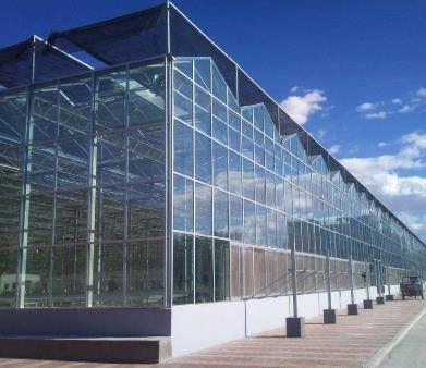 日喀则连栋温室大棚建设近期行业动态