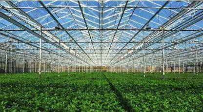 温室大棚建造连栋大棚建设产品上涨
