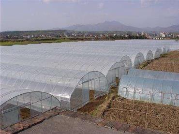 日喀则养殖大棚多少钱重要启示