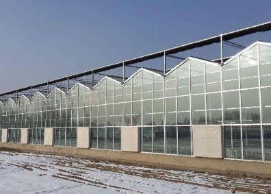 鹤壁温室蔬菜大棚建造假一赔万