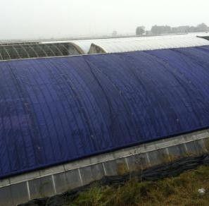 臨江防水大棚棉被聚焦行業